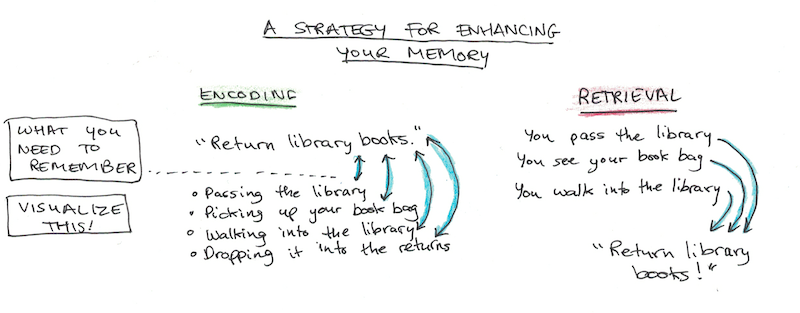 The Complete Guide to Memory | Scott H Young