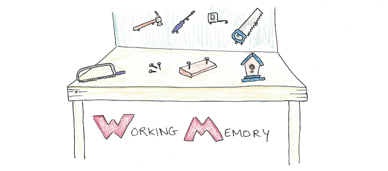 What Is Working Memory >> Working Memory A Complete Guide To How Your Brain Processes