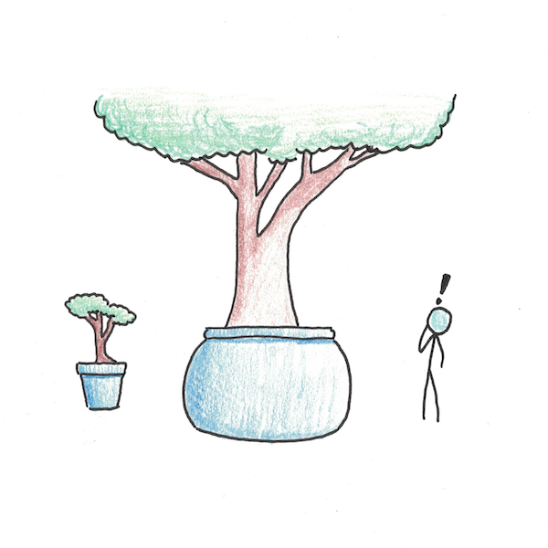 The height of a tree depends not just on the seed, but the size of the pot it was planted in.
